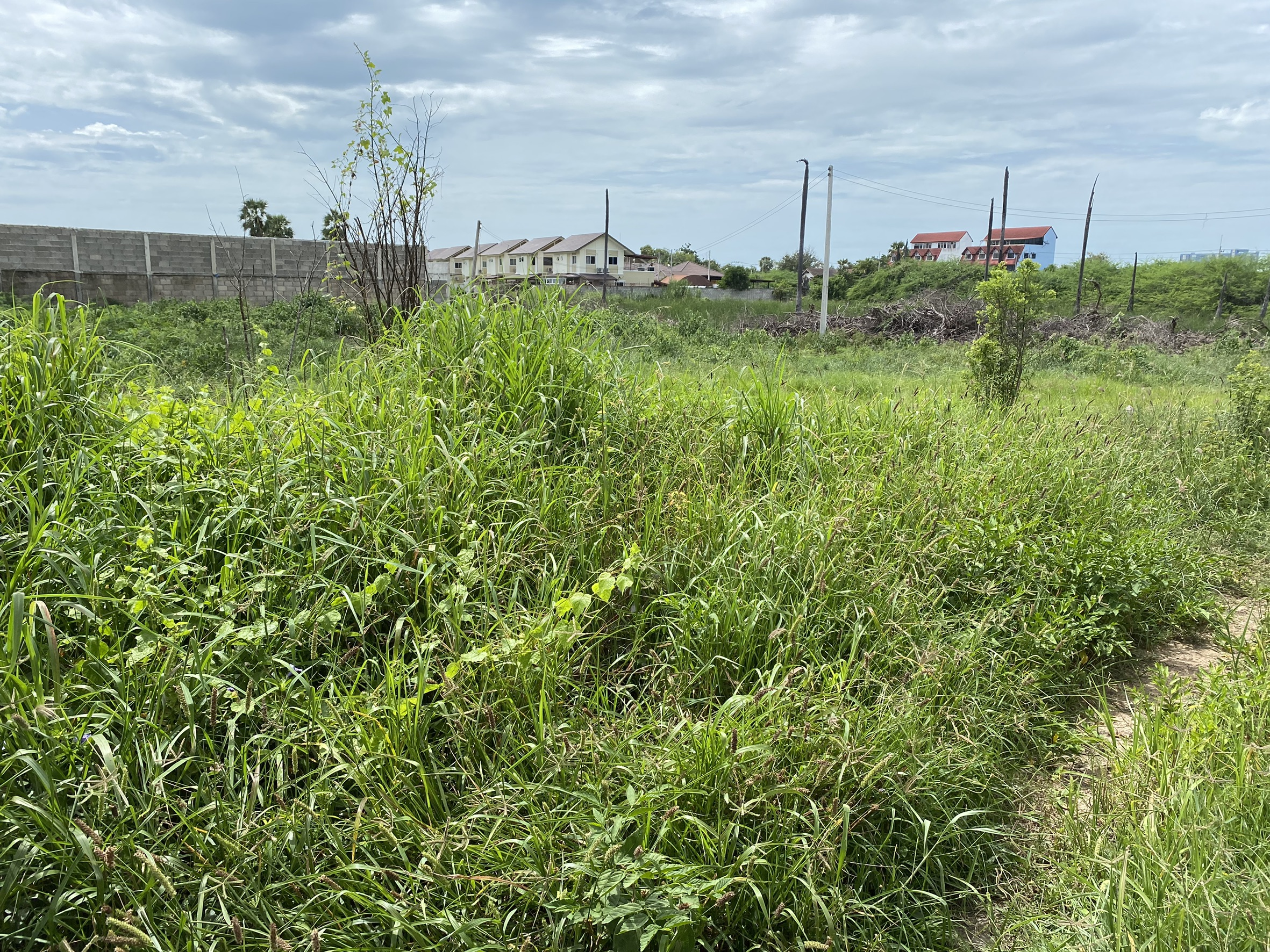 Land For Sale In Cha-am 592 Sqm